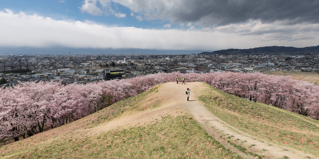 ライオンズの夢が生んだ 信州の桜の名所