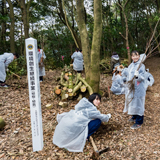 落葉樹で山に保水力を 延べ7500本の植樹