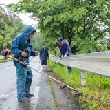 街道を彩るヤマザクラ並木 毎月清掃活動を実施