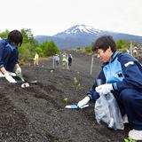 100年の計で挑む 富士山の緑化活動