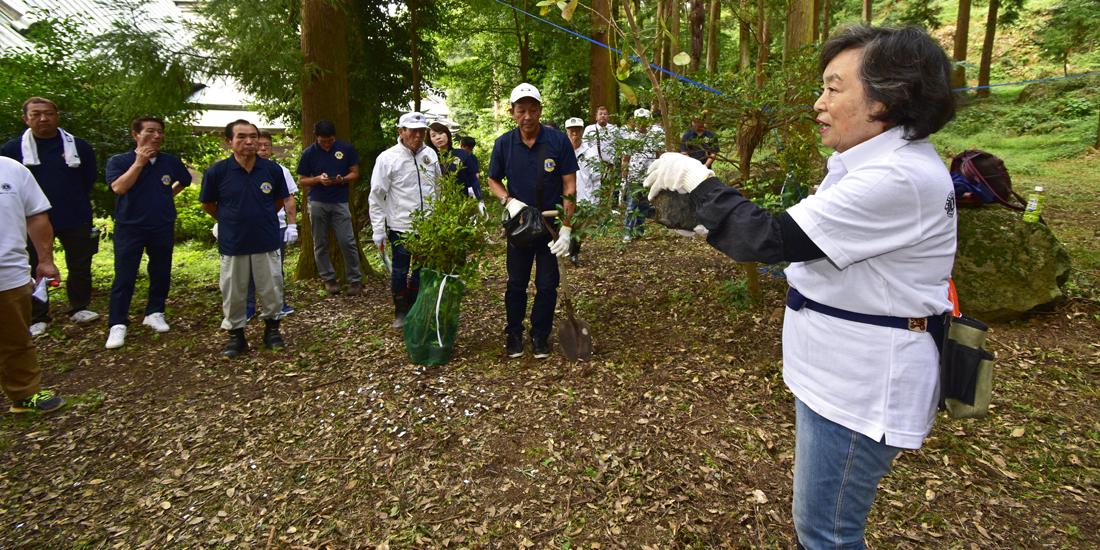 ドングリを育苗し、土地の 生態系にかなう森づくりを