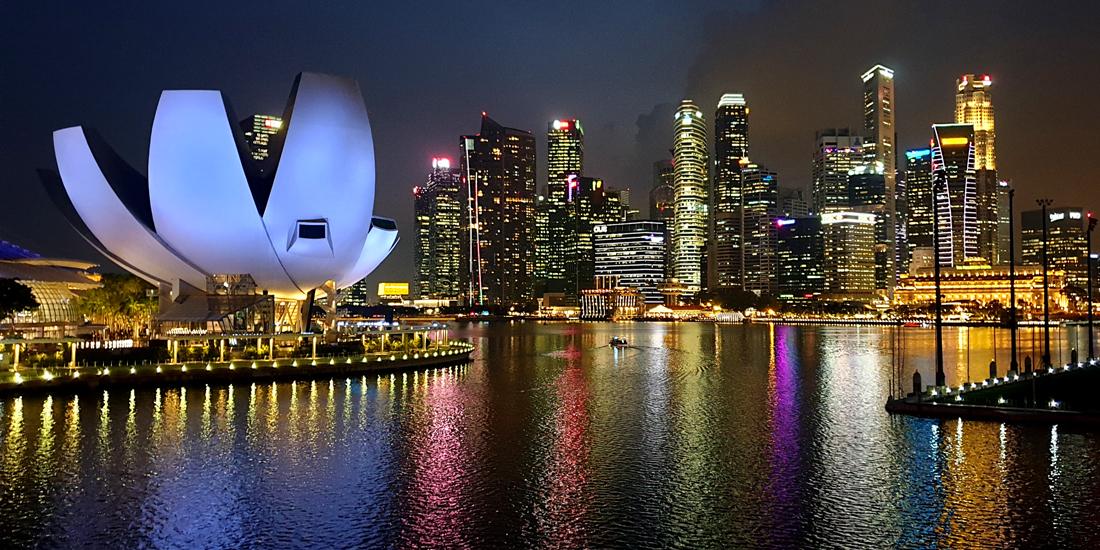シンガポール国際大会 投票と代議員資格証明