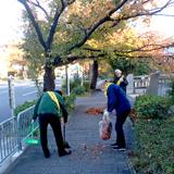 堀川と堀川通りを美しく 早朝清掃活動