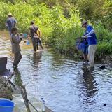 環境意識を育む天白川水質調査